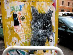 C215 - Roma (Garbatella) by C215, via Flickr. cat street art by Christian Guémy, A.K.A. C215.