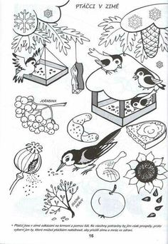 - Paper Plate Crafts For Kids, Winter Crafts For Kids, Coloring For Kids, Coloring Pages For Kids, Feeding Birds In Winter, Winter Wonder, Winter Art, Forest Animals, Preschool Crafts