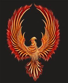 phoenix logo - commission by on DeviantArt Phoenix Artwork, Phoenix Wallpaper, Phoenix Images, Dragon Koi Tattoo Design, Shiva Tattoo Design, Phoenix Bird Tattoos, Phoenix Tattoo Design, Phoenix Dragon, Eagle Art