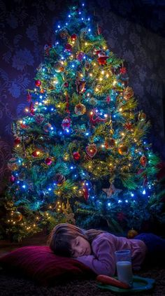 My kids and 'adopted' kids spent many nights sleeping under our Christmas tree☺