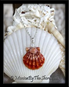 An extremely rare blood red Hawaiian Sunrise Shell in pristine perfect condition! This stunning shell has extraordinary coloring, sharply squared wings and beautifully ruffled ribs, a perfect red Sunrise Shell, these are not found often! The Sunrise Shell measures slightly larger than 3/4 inches and is crowned with a sparkling Swarovski Crystal, on 16 inch sterling silver rope chain. Do you see the Angel in this seashell? She's right there! #amazing #blessed