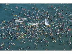 Hobie Alter paddle-out. RIP