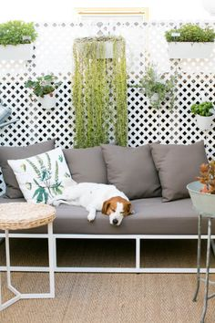 http://www.designsponge.com/2015/08/18-patios-porches-and-sunrooms-that-make-us-swoon.html