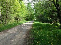 Camino De Grava, Por Carretera
