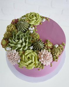"""Self-confessed """"buttercream enthusiast"""" Leslie Vigil crafts delectable cake art inspired by nature. Each multi-tier masterpiece is topped with realistic flowers and cacti, perfectly piped with buttercream frosting. Succulent Wedding Cakes, Succulent Cakes, Cake Pops, 3d Jelly Cake, Cactus Cake, Plain Cake, Biscuits, Salty Cake, Köstliche Desserts"""