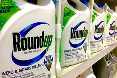 Nebraska Farmers Sue Monsanto for Allegedly Giving Them Cancer.It's not the first lawsuit to attempt to blame the agriculture giant for cancer. Agriculture, Punitive Damages, Weed Killer, Weed Control, Alternative Health, Active Ingredient, Trials, This Or That Questions, Monsanto Roundup