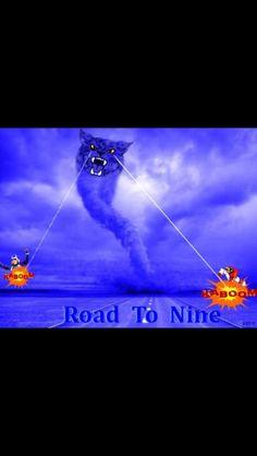 BBN-- BIG BLUE NATION GO CATS GO!!!