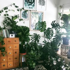 This is my dream home—plants everywhere! Repost from . Room Inspiration, Interior Inspiration, Illustration Botanique, Decoration Plante, Plants Are Friends, Deco Design, Green Life, Plant Design, My Living Room