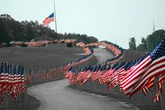 Flag memorial at Cape County Park in honor of our veterans on Memorial Day.  Cape Girardeau MO.  Photo courtesy of Greg Franklin via the SEMissourian.