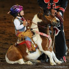 Such a cute photo of a little girl and her horse! #ArabianHorses #Humor