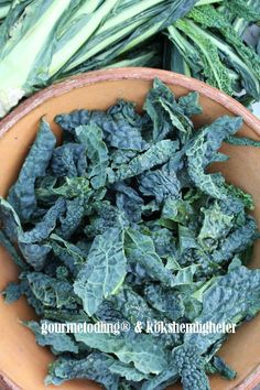 Cavolo laciniato nero di Toscana. En italiensk specialitet som vi nu kan odla här i Skandinavien i och med att vi kan få tag på fröer här :) Hos gourmetgarage.dk