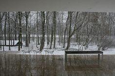 The Edith Farnsworth House, Plano, Illinois | Ludwig Mies van der Rohe