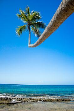 """Paradise"" Tres Palmas (Rincon) Puerto Rico beautiful beach in Puerto Rico's west side enjoy!!!  by Juan P. Rivera Caraballo"