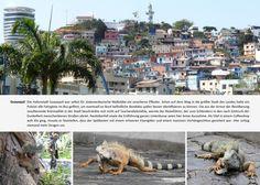 Olaf Broder & Geli Kruse   Europa kann warten   Reisebericht und Bildband einer Weltreise   GO Books   Ecuador