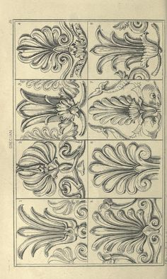 Architectural Drawing Patterns Guide for drawing the acanthus, and every descr. Ornament Drawing, Grisaille, Carving Designs, Motif Floral, Architectural Elements, Architecture Details, Drawing Architecture, Wood Carving, Line Art