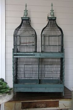 Shabbylishious: Indulge me in blue-Hengi meg til blått Button Quail, Antique Bird Cages, Open Door Policy, The Caged Bird Sings, Collections Etc, Antique Stores, Tiffany Blue, Aqua, Teal