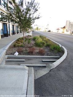 Rain Garden on Troost by TheTransitCamera, via Flickr