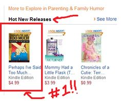HOLY POOP CRAP - my book made the #1 hot new release on Amazon!!