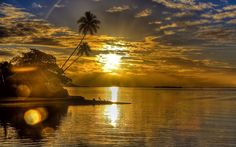 Sunrise Beach Tropical Wallpapers Pictures Photos Images