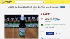 #El cannabis medicinal ya tiene su mercado negro - Diario El Día: Diario El Día El cannabis medicinal ya tiene su mercado negro Diario El…