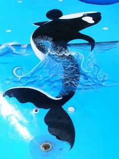 pool painted  whale jillhungerford.com  17 feetx8