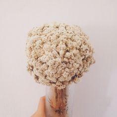Forever Flower