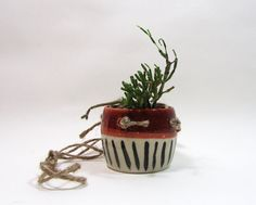 Hanging little cactus planter, red dipped and black lines