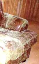 How Can Mold Be Cleaned U0026 Removed From Leather Furniture? This Is A  Question We