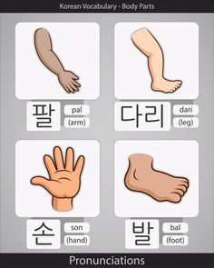 These are the Korean words for arm leg hand and foot pal dari son bal Korean Words Learning, Japanese Language Learning, Learn Korean Online, Learning Languages Tips, Foreign Languages, Learn Korean Alphabet, Learn Hangul, Korean Writing, Korean Lessons