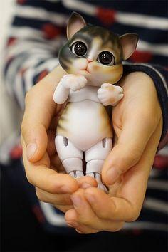 Dollshe Craft Molly