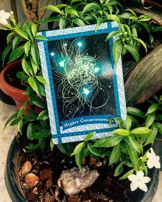This card brings a message that you are in sync with your higher self .You understand and acknowledge your true emotions.You are supported and are being divinely guided .You have been consciously trying to quieten you mind to listen to that voice of clarity or you've firmly decided to improve you life.Well done ! Keep going on this path !  continue having conversations with your higher self finding the calm in the chaos is important at this stage . Take out time to be out in nature go for…