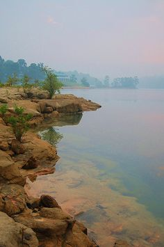 Cow Pasture Point, Lewis Smith Lake, Crane Hill, Alabama. Lewis Smith Lake is a reservoir in north Alabama. Located on the Sipsey Fork of the Black Warrior River, the lake covers over 21,000 acres in Cullman, Walker, and Winston counties. (V)