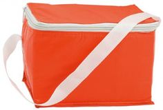 Coolcan cooler bag  Square shaped PVC cooler bag with carrying strap.