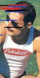 Photo 2c. Freddie Mercury. The 80s. Vol.. King Of Queens, Queen Photos, Queen Freddie Mercury, Education, Learning, Teaching, Studying
