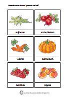 Woordkaarten thema 'Groente en fruit' (Dagmar Stam).pdf Site: Kleuterjuf in een kleuterklas