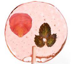 Make bellini flower lollipops.