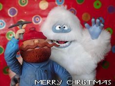 Merry Christmas from Bumble and Yukon