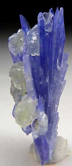 Tanzanite with Prehnite from Merelani Hills, Lelatema Mtns., Arusha Region, Tanzania - looks like a beautiful flower Minerals And Gemstones, Rocks And Minerals, Arusha, Beautiful Rocks, Mineral Stone, Rocks And Gems, Stones And Crystals, Gem Stones, Mother Nature