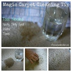 Try this magic spot carpet cleaning trick with only water. You will never have to use carpet cleaner again. How to Clean Spots on Carpets