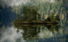 Preview wallpaper forest, lake, reflection, island, mist