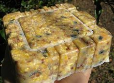 Here's a DIY recipe that contains some coconut oil for bird suet cakes.