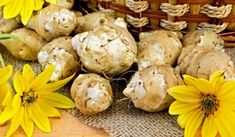 Средство от боли в коленных суставах | ВКонтакте Health And Wellness, Health Fitness, Medical Art, Garden Care, Artichoke, Healthy Lifestyle, Garlic, Stuffed Mushrooms, Potatoes