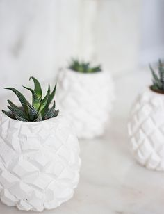 DIY clay pineapple pots