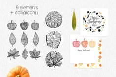 Leaves and pumpkins kit EPS by Fears on Creative Market