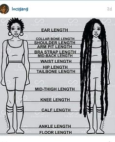 Loc length guide