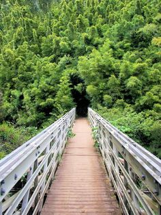 bridge to bamboo abyss - seven sacred pools national park, maui