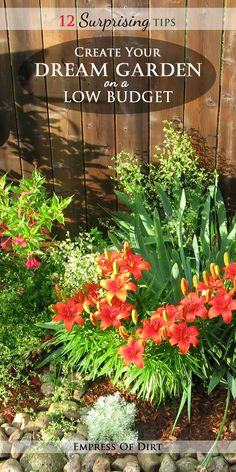 12 Surprising tips to create your dream garden on a low budget with Melissa the Empress of Dirt