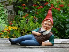 Gnome costume involves solid-colored long sleeved shirt, pants, and boots. Wear a beard and elf hat, too! Fake Geek Girl, Geek Girls, Gnome Costume, Chia Pet, Luxembourg Gardens, Elf Hat, Garden Ornaments, Vintage Disney, Popular Culture