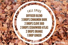 Enjoy the warm scents of Fall with this wonderful diffuser blend! Fall Essential Oils, Essential Oils Online, Essential Oil Carrier Oils, Ginger Essential Oil, Cinnamon Essential Oil, Cedarwood Essential Oil, Essential Oils Cleaning, Essential Oil Diffuser Blends, Essential Oil Uses