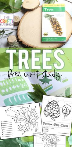 Free Trees Unit Study for Kids